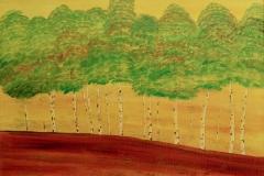 Birken sind meine Lieblingsbäume (50 x 70 cm) 300 €